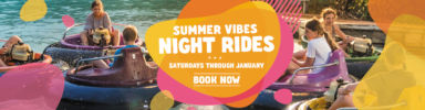 Summer Night Vibes Banner