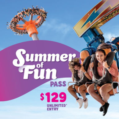Summer Of Fun Pass Square