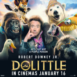 Dolittle Movie Competition
