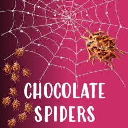 Kidz in the Kitchen: Chocolate Spiders