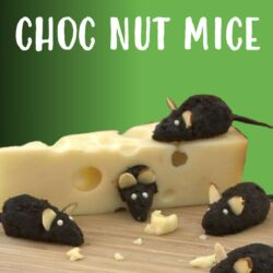 Kidz in the Kitchen: Choc Nut Mice